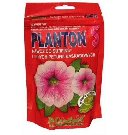 PLANTON  S /surfinie,petunie/